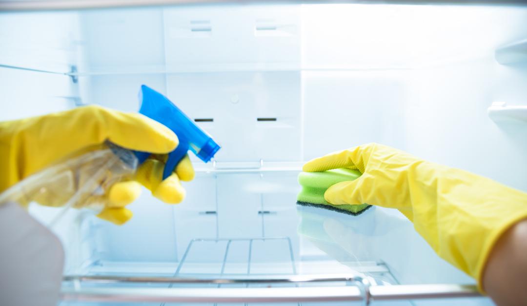 desinfectar el refrigerador y prevenir virus y bacterias